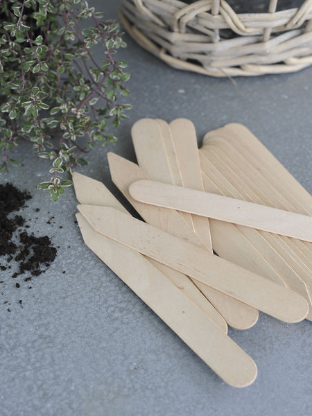 Handcrafted Birch Plant Labels