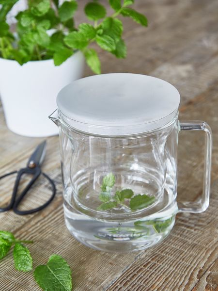 Glass Tea Pot with Strainer