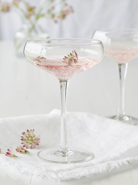 Bubble Glass Champagne/Cocktail Coupe