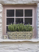 Willow and Zinc Window Box
