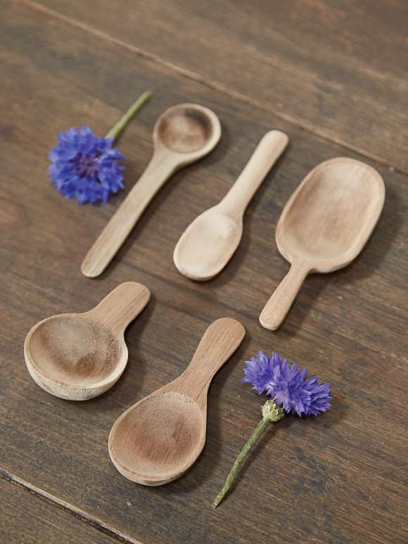 Mini Salt & Spice Spoon Set