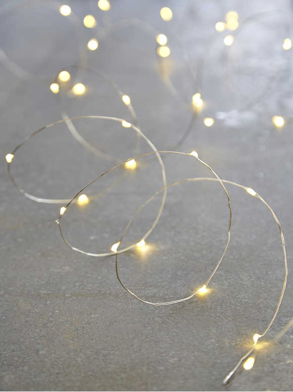 Silver Wire LED Lights