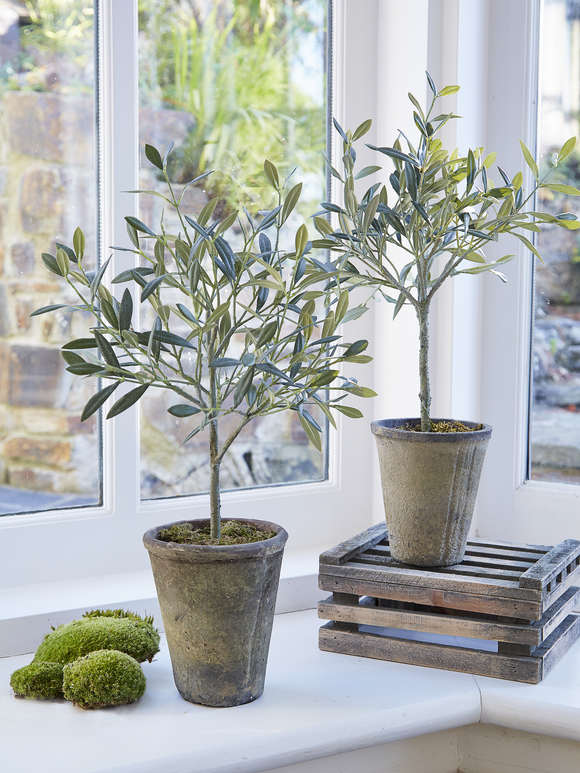 Small Faux Olive Tree
