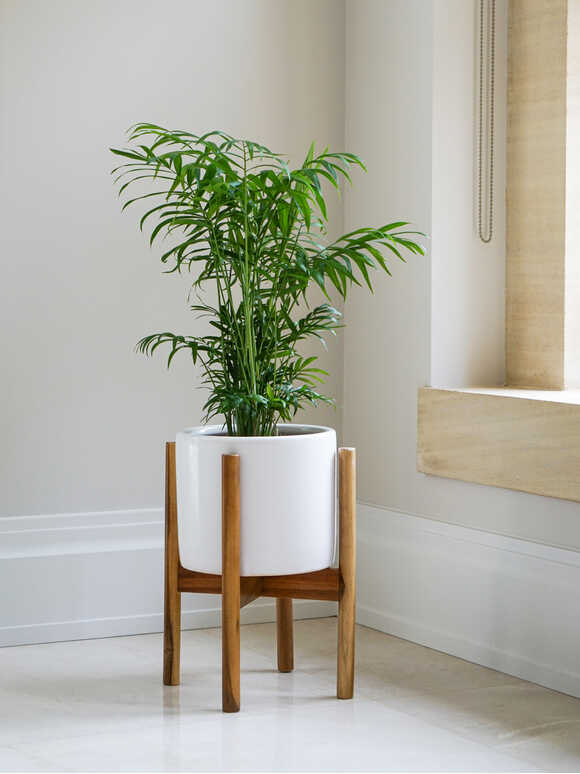 White Planter and Stand Set