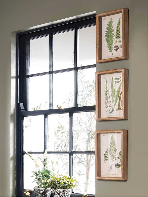 Framed Botanical Wall Art Set