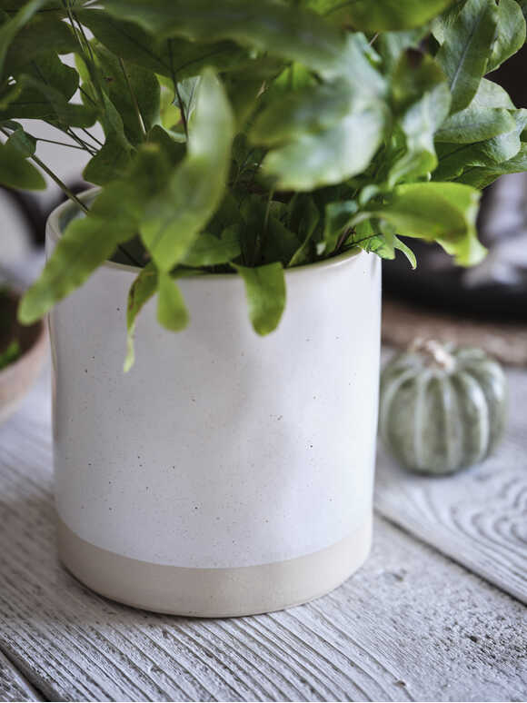 Speckled Ivory Plant Pot