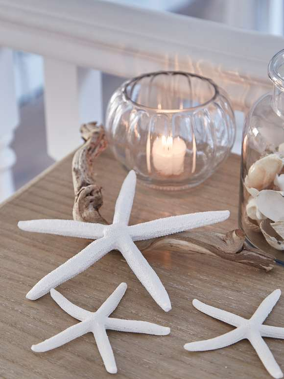 Starfish Decorations