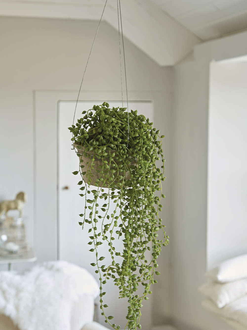 Faux String Of Pearls Amp Pot Artificial Evergreen Decoration