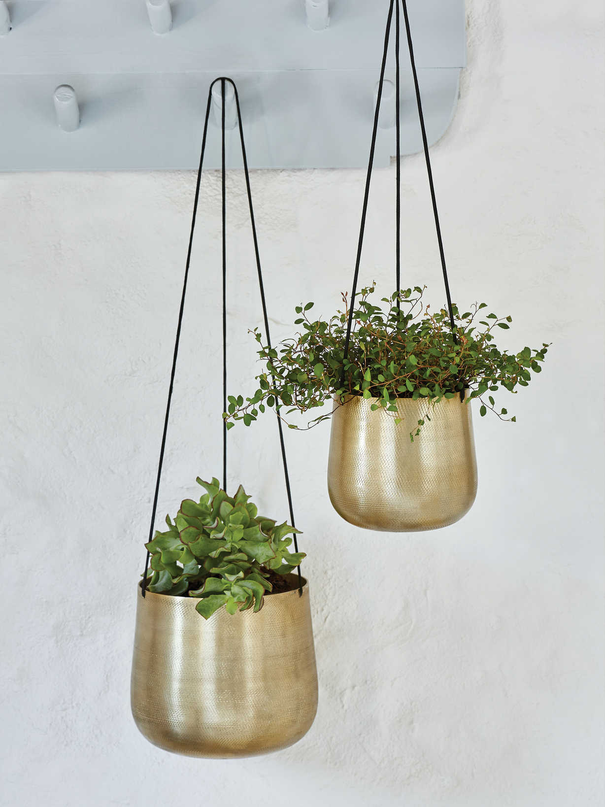 Nordic House Curved Hanging Planters