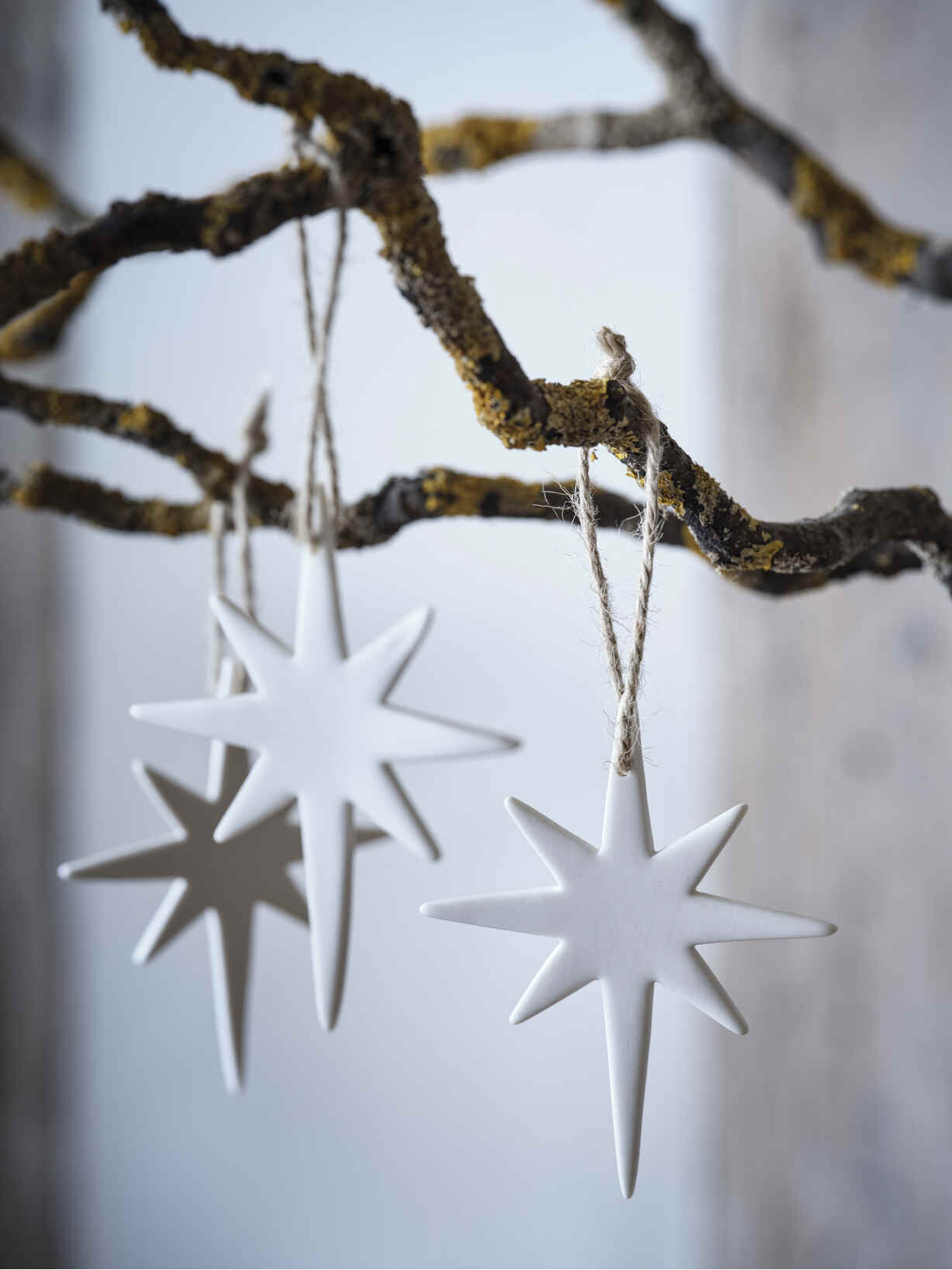 Nordic House Porcelain North Star