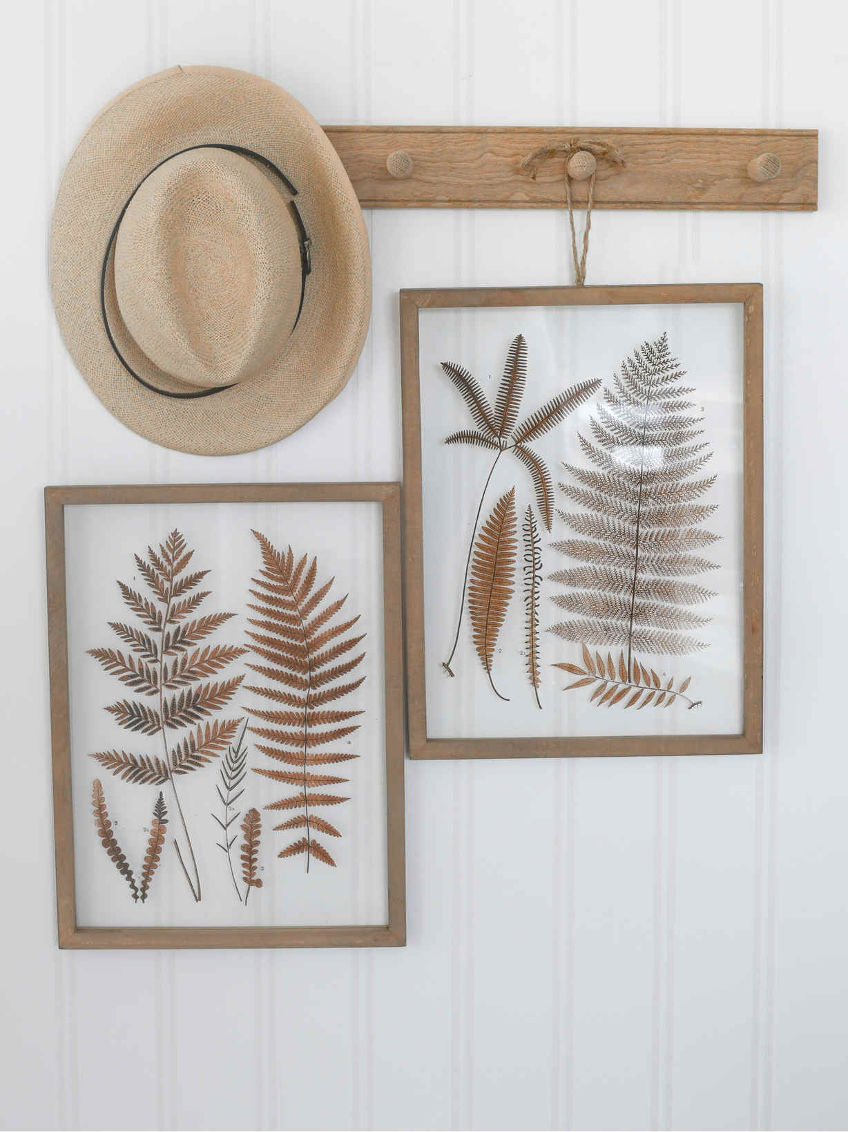 Nordic House Fern Picture Set
