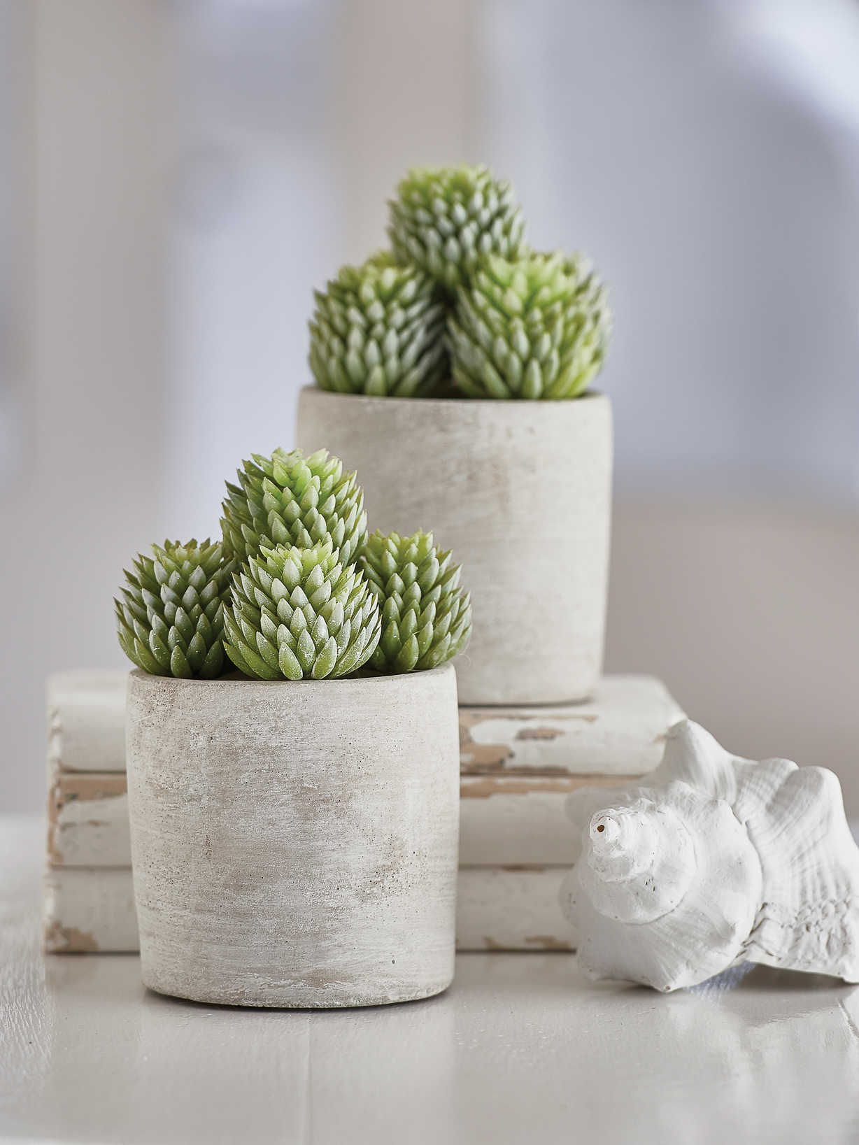 Nordic House Faux Potted Succulent