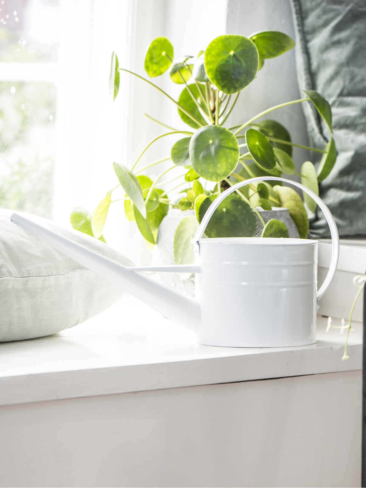Nordic House White Enamel Watering Can