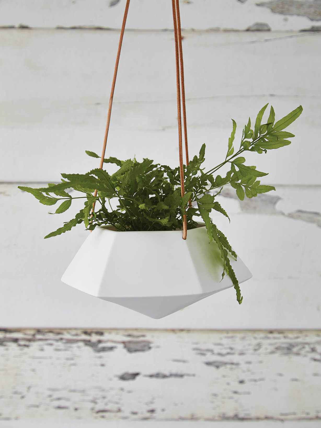 Nordic House Geometric Hanging Planter - Medium