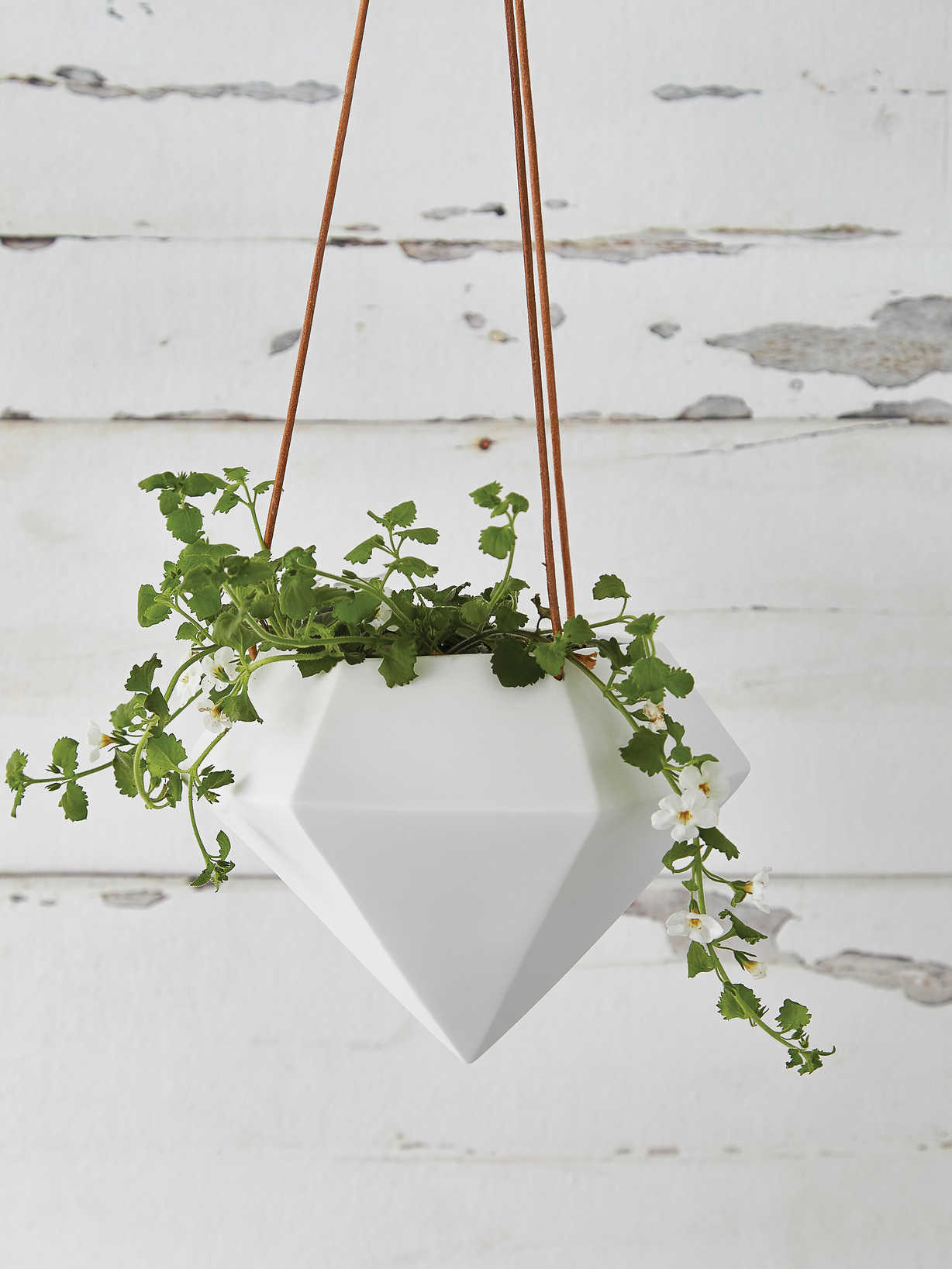 Nordic House Geometric Hanging Planter - Large