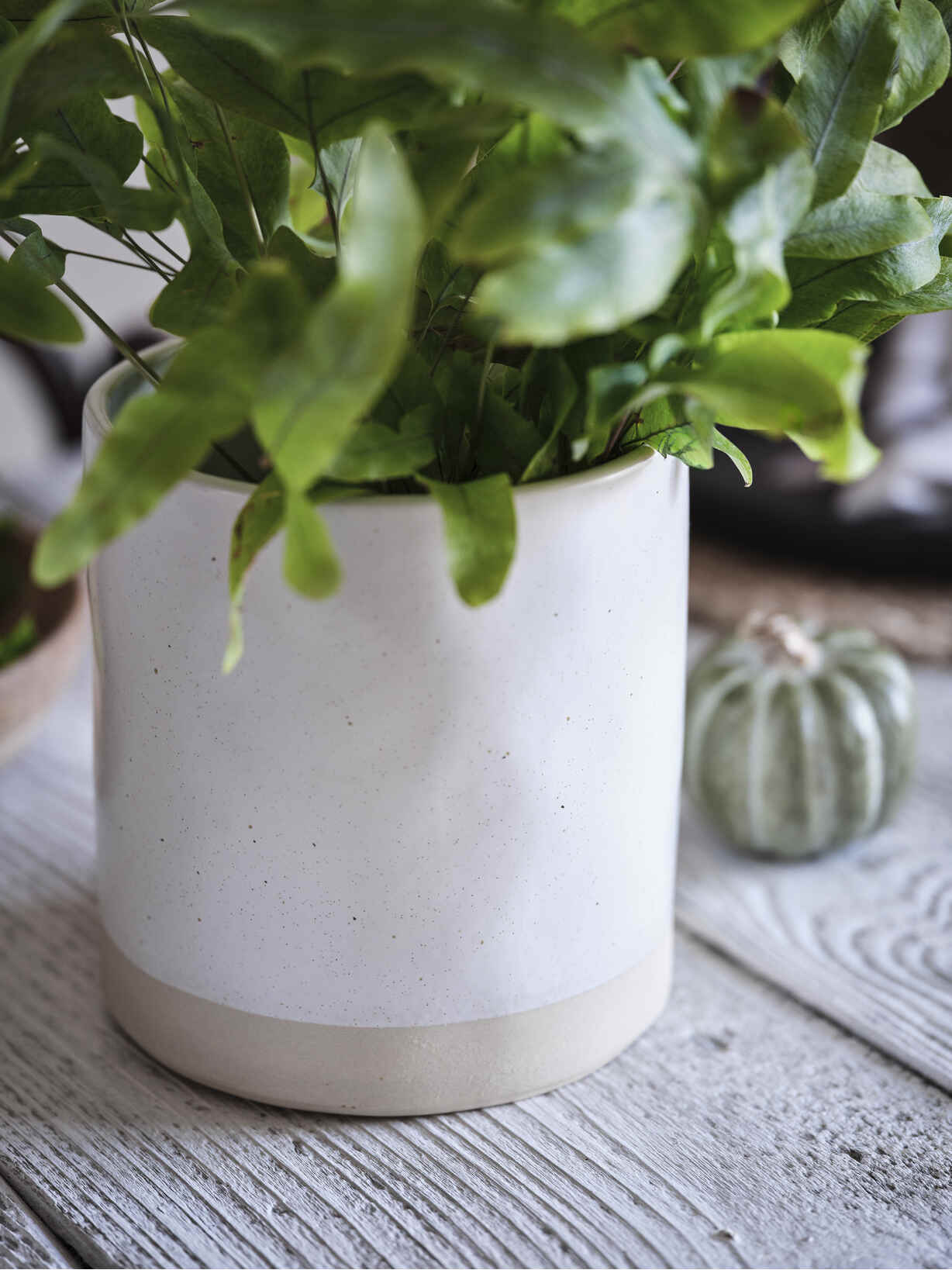 Nordic House Speckled Ivory Plant Pot