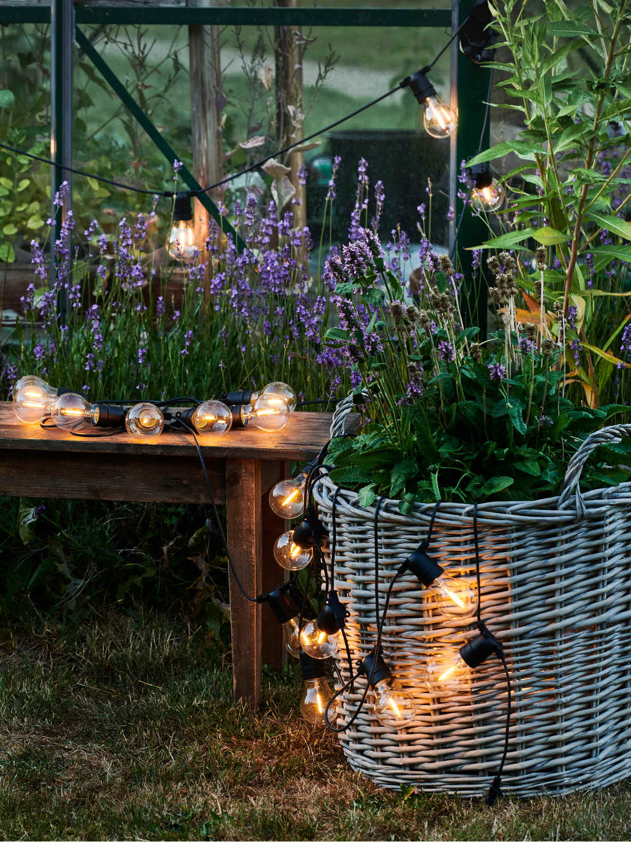 Nordic House Outdoor/Indoor Festoon String Lights
