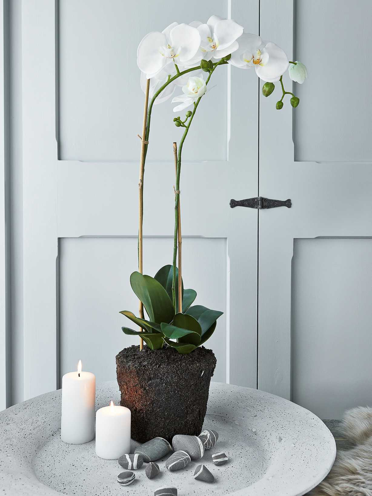 Nordic House Large Faux Orchid