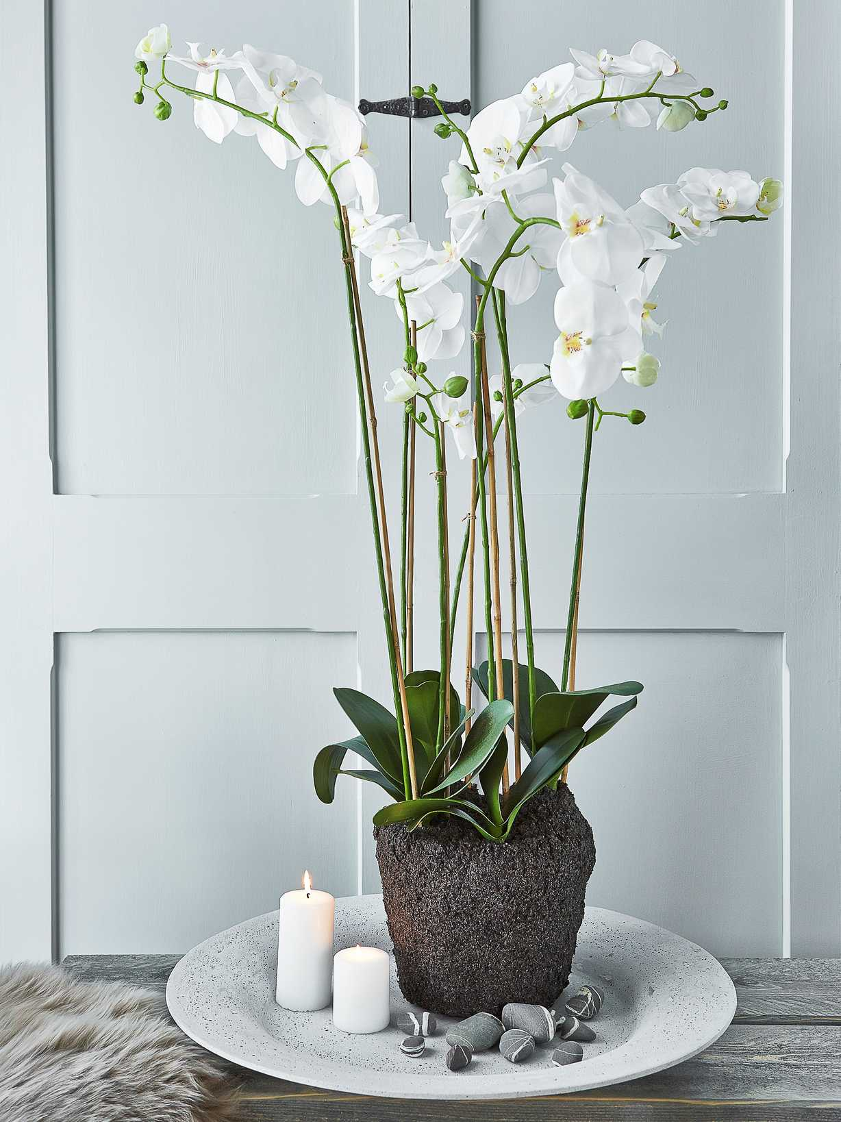 Nordic House Extra Large Faux Orchid