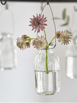 Nordic House Mini Hanging Bottle Vase Set