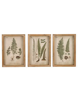 Nordic House Framed Botanical Wall Art Set