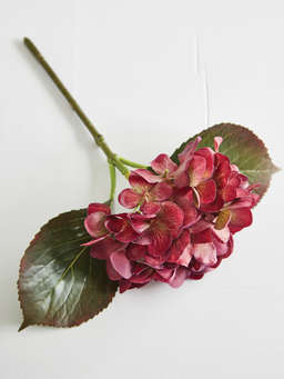 Nordic House Faux Hydrangea Stems - Deep Red