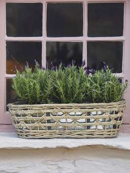 Nordic House Willow and Zinc Window Box