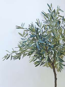 Nordic House Extra Large Faux Olive Tree