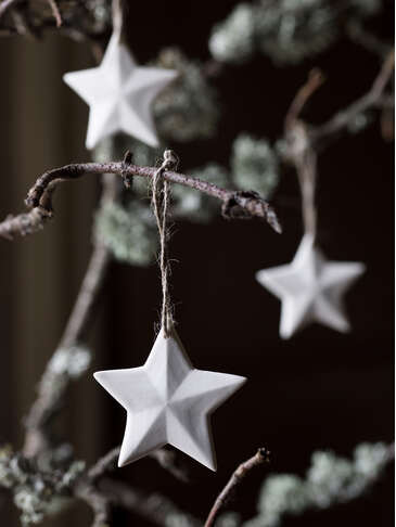 Ilse Porcelain Star Set