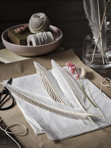 Tall Pheasant Feather Set