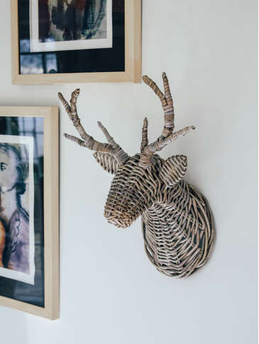 Wall Mounted Stag's Head