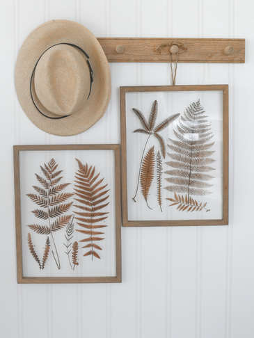 Fern Picture Set