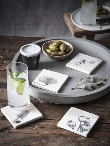 Foraged Nature Coaster Set
