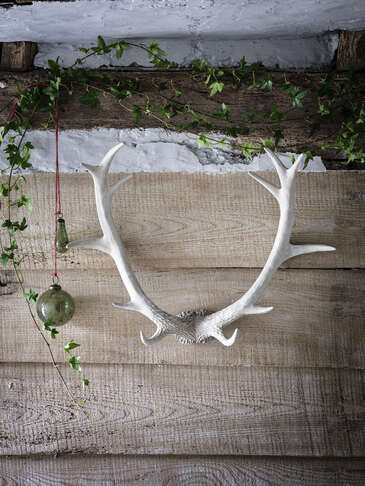 Whitewashed Wall Antlers