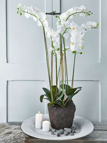 Extra Large Faux Orchid